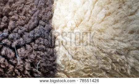 sheep wool texture black and white