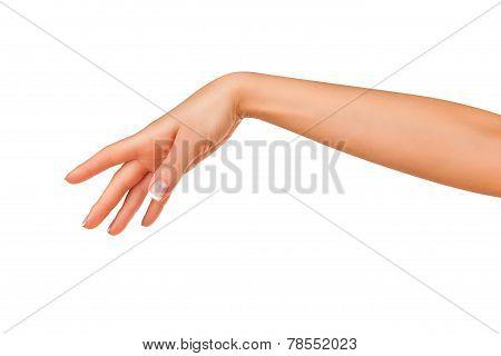 Beautiful Hand
