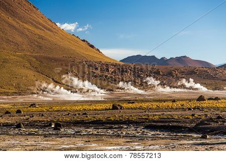 Geysers in the Atacama Desert, Chile