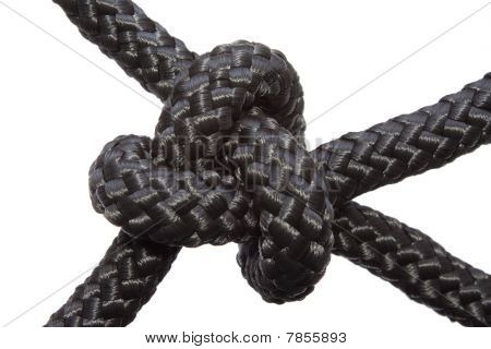 Bowline Knot isolated