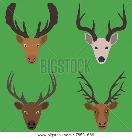 Collection of deer heads in a flat design