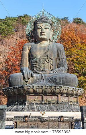 Statue Of Buddha In Seoraksan National Park ,korea