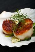 picture of scallop-shell  - grilled scallops in their shell on a black placemat - JPG