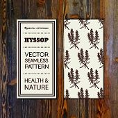 picture of hyssop  - Health and Nature Collection - JPG