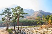 picture of seoraksan  - colorful trees and overlap mountain and sunlight at Seoraksan national park in autumn South Korea - JPG