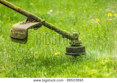Trimmer Head Cutting Grass To Small Pieces