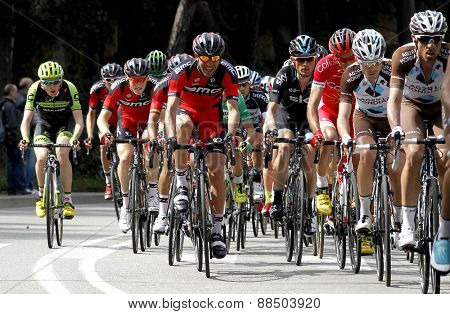 BARCELONA - MARCH, 29: Pack of the cyclists ride during the Tour of Catalonia cycling race through the streets of Monjuich mountain in Barcelona on March 29, 2015