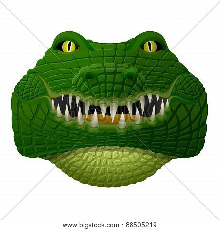 Realistic Crocodile Face Looks Ahead