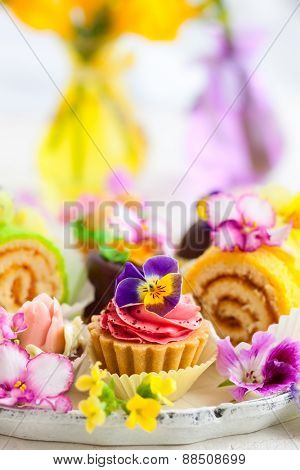 Assorted cakes and pastries for afternoon tea