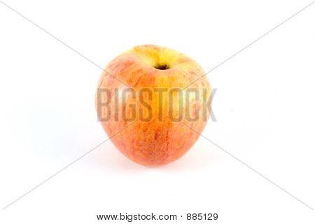 Gala Apple Alpha