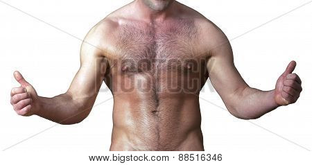Muscular Male Torso With Thumbs Up