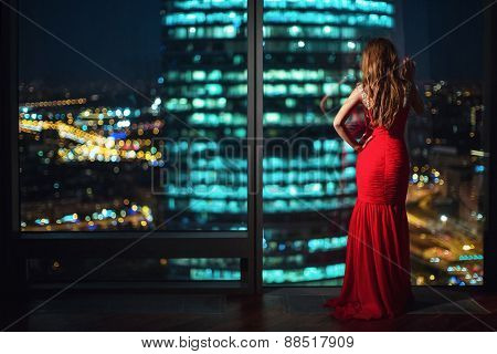 Beautiful girl at the window at night
