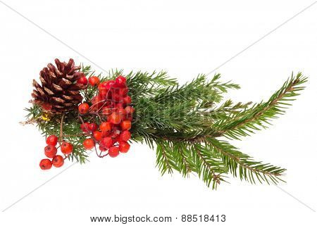christmas decoration, vector