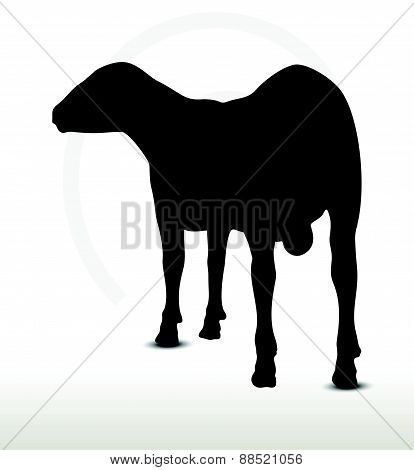 Sheep Silhouette With Looking Pose