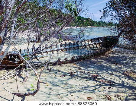 skeleton boat thrown into the bushes on the coast
