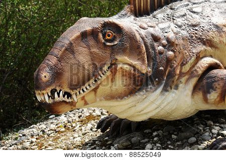 Dimetrodon Model Face And Head