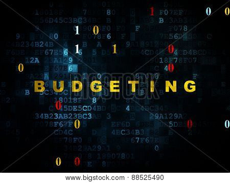 Business concept: Budgeting on Digital background