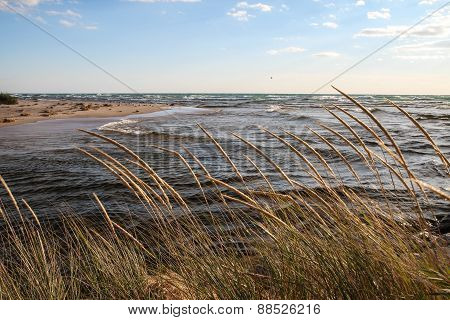 Coastal Background