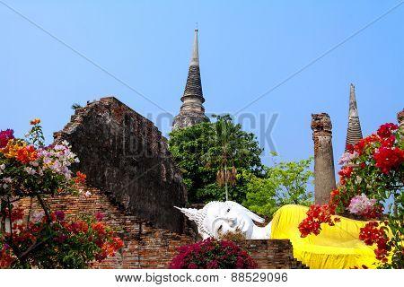 Architecture Buddha And Flower