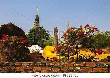 Statue Buddha Sleep Outdoor