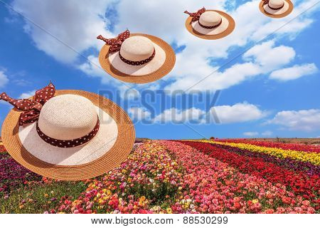 Bright festive colorful blooming field of buttercups. Flying elegant wide-brimmed hats decorated with spring Easter landscape