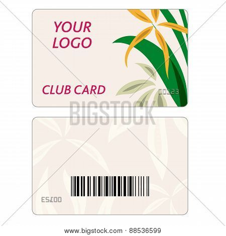 Set Of Colorful Vector Business Cards