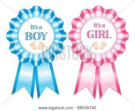 Its A Boy And Girl Rosettes