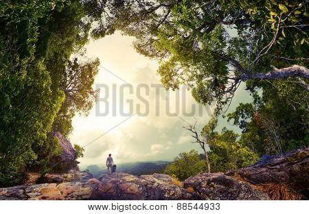 Hiker with backpack standing on the rock surrounded by lush tropical forest
