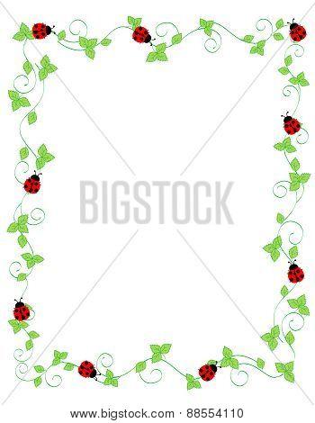 Red Lady Bug Frame