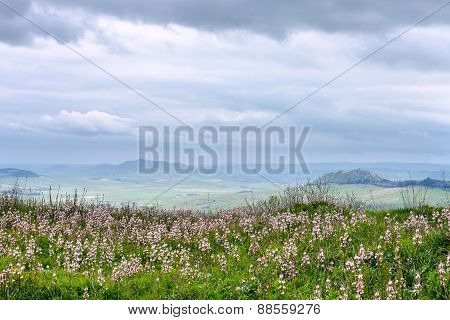Sicilian Landscape In Rainy Spring Day