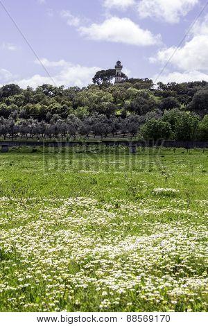 Alentejo Region Typical Fields Landscape, Portugal.