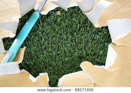 Torn Paper With Cutter On Grass