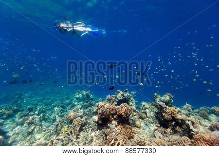 Underwater photo of woman snorkeling in tropical water