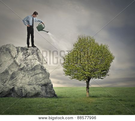 Businessman watering a plant
