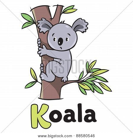 Children vector illustration of funny koala. Alphabet K