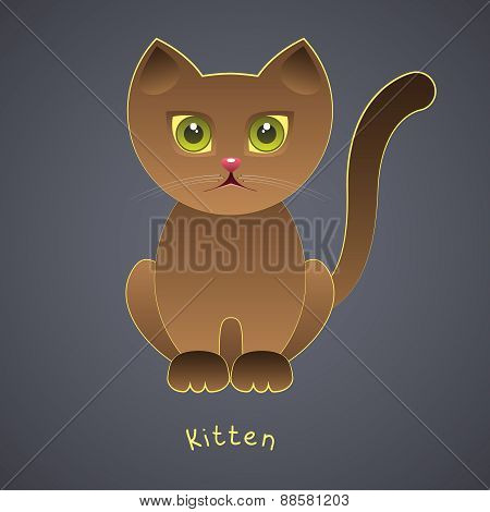 Cute funny brown kitten with green eyes on a gray background