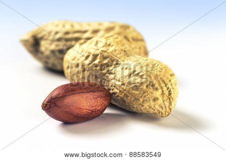 Several Peanuts