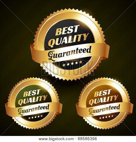 best quality beautiful vector golden label design illustration