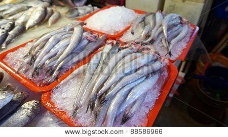 Fresh Fish In The Orange Box.