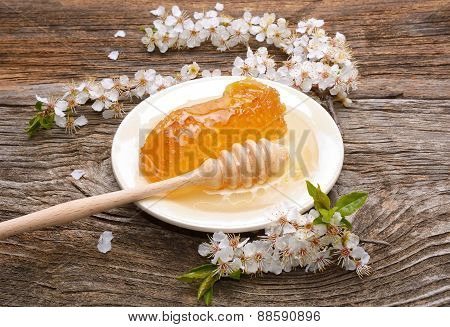 Honey, honeycomb and apricot flowers on wooden background