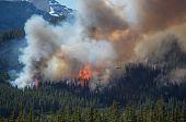 Постер, плакат: Лесной пожар в Скалистых горах