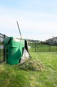 stock photo of spring-cleaning  - Yard maintenance in spring cleaning the lawn and raking up grass clippings after mowing with a pile of grass and rake leaning on a plastic bin for composting - JPG