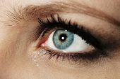 foto of tears  - Eye of young woman with tear drop close up - JPG