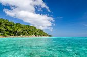 image of crystal clear  - Crystal clear sea and white sand beach at Tachai island Andaman Thailand - JPG