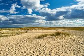 pic of cape-cod  - Landscape with sand dunes at Cape Cod - JPG
