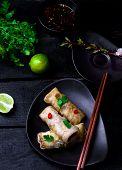 pic of thai cuisine  - fried spring rolls - JPG