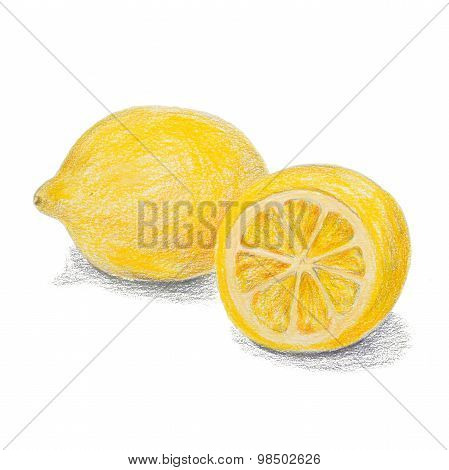 Hand drawn colored pencils lemon sketch with shadow