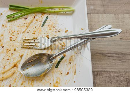 Empty Dish But Still Has Spring Onion After Food On The Table
