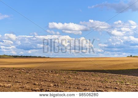Summer Rural Landscape: Wheat Field, Plough Land And Blue Sky
