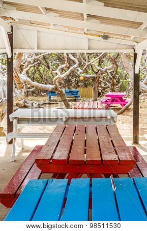 Blue And Red Picnic Tables